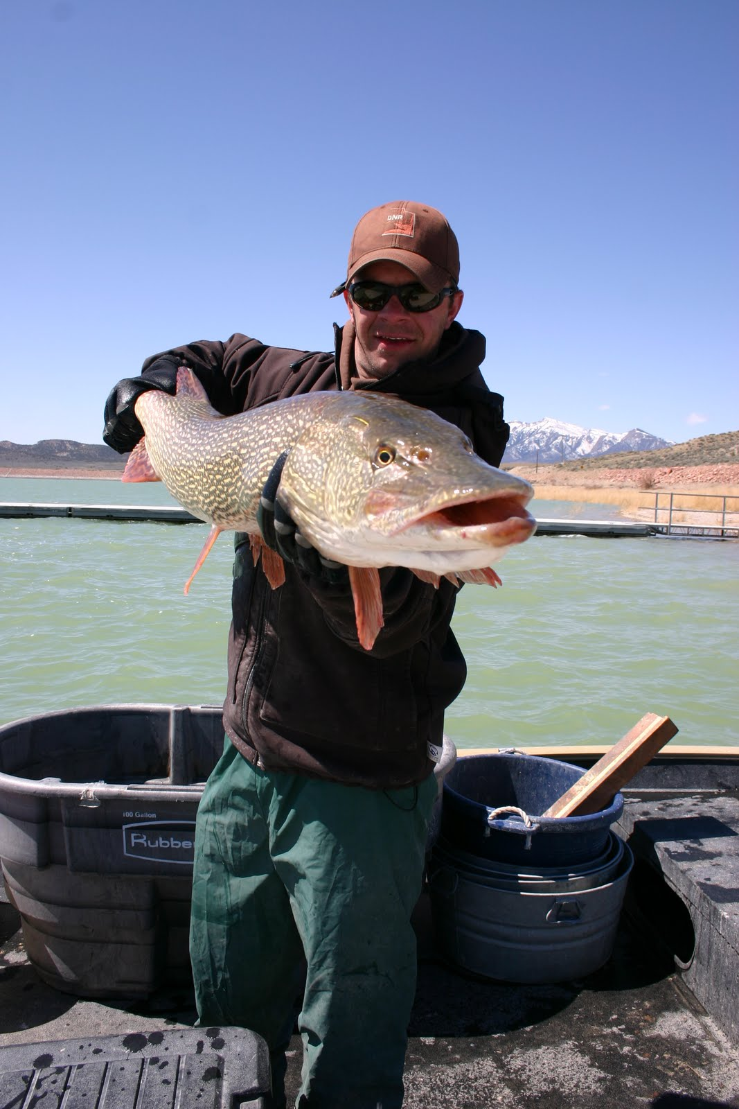 central utah region fishing report backcountry utah